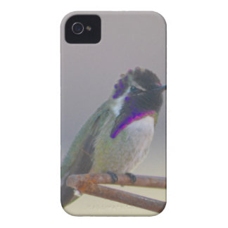 Royalty iPhone 4 Case