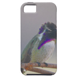 Royalty iPhone 5 Case