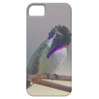 Royalty iPhone 5 Cover