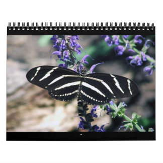 rSEANd - Nature Wall Calendars