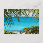 RSVP Tropical Beach framed with Palm Fronds