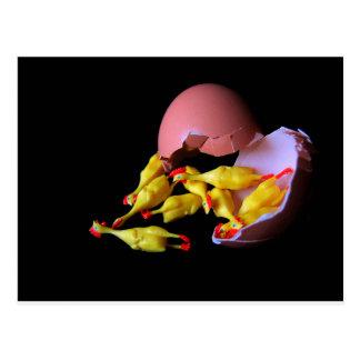 Rubber Chicken Hatchling Postcard