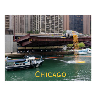 Rubber Ducky Derby Chicago Postcard