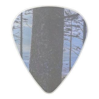 Ruby Beach sea shore Acetal Guitar Pick