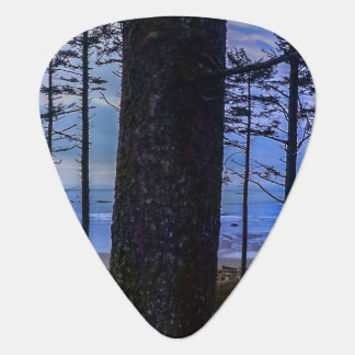 Ruby Beach sea shore Guitar Pick