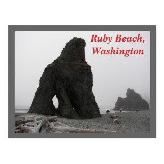 Ruby Beach, Washington Travel Photo Postcard