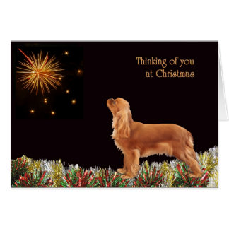 Ruby Christmas Cavalier Greeting Card