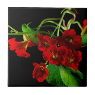 Ruby Red Nasturtium Ceramic Tile