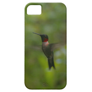 Ruby Throat Hummingbird iPhone 5 Cases