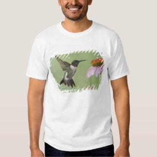 Ruby-throated Hummingbird, Archilochus 3 T Shirt