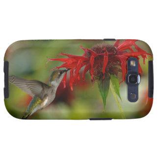 Ruby-Throated Hummingbird Archilochus Colubris Galaxy SIII Cover