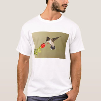 Ruby-throated Hummingbird Archilochus T-Shirt