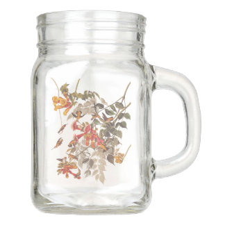 Ruby Throated Hummingbird Audubon Bird Vintage Art Mason Jar