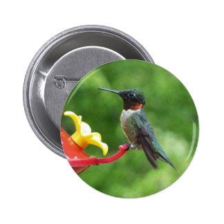 Ruby-Throated Hummingbird Button