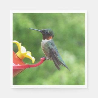 Ruby-Throated Hummingbird Bird Photography Disposable Serviette