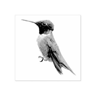 Ruby-Throated Hummingbird Bird Photography Rubber Stamp