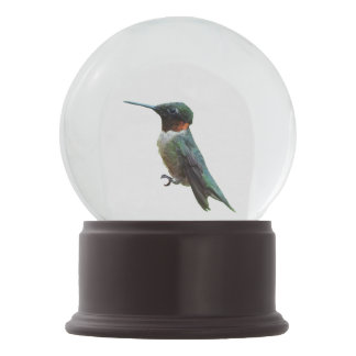 Ruby-Throated Hummingbird Bird Photography Snow Globe