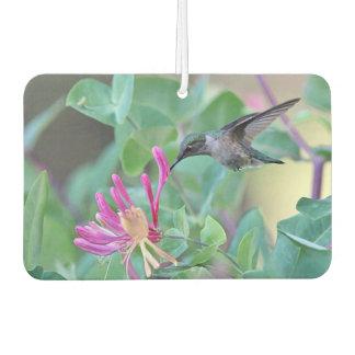 Ruby-throated Hummingbird Car Air Freshener