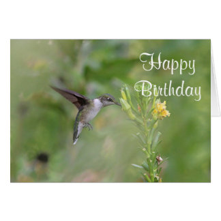 Ruby-throated hummingbird card