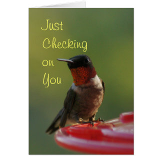 Ruby Throated Hummingbird - customize Card