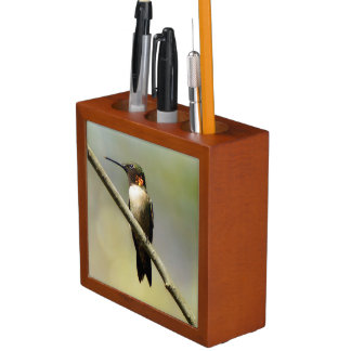 Ruby-Throated Hummingbird Desk Organizer