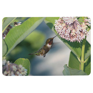 Ruby-throated hummingbird floor mat