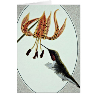 Ruby-throated hummingbird  flowers greeting cards