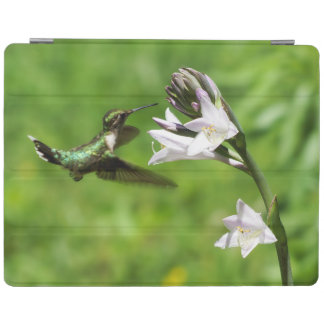 Ruby Throated Hummingbird iPad Smart Cover