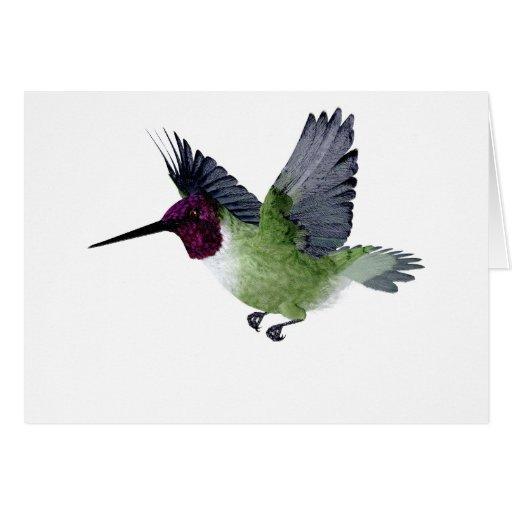 Ruby Throated Hummingbird Male Greeting Card