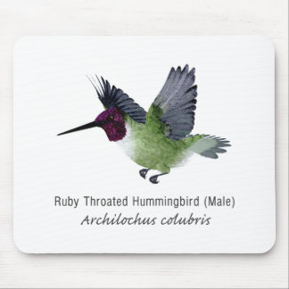 Ruby Throated Hummingbird Male with Name Mousepads