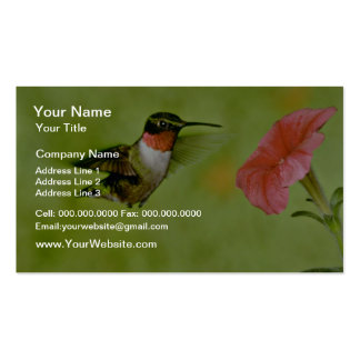 Ruby-throated Hummingbird (male) with petunia Pink Business Card Templates