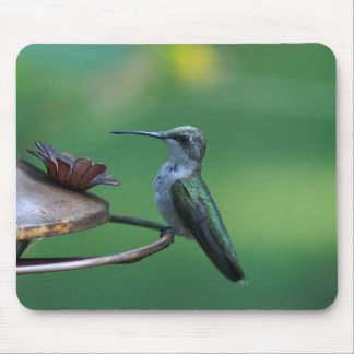 Ruby-throated Hummingbird Mousepad. Mouse Pad