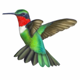 Ruby Throated Hummingbird Pin Photo Sculpture Badge