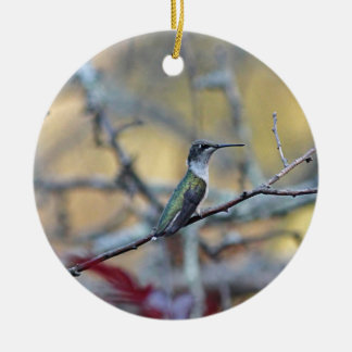 Ruby-throated hummingbird round ceramic decoration