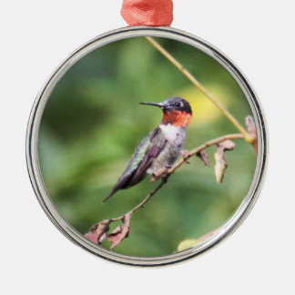 Ruby-throated Hummingbird Silver-Colored Round Decoration