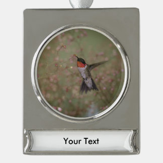 ruby throated hummingbird silver plated banner ornament