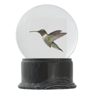 Ruby Throated Hummingbird Snow Globe