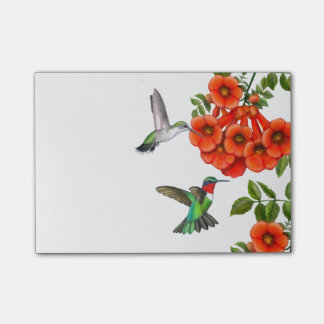 Ruby Throated Hummingbirds Post-it Notes