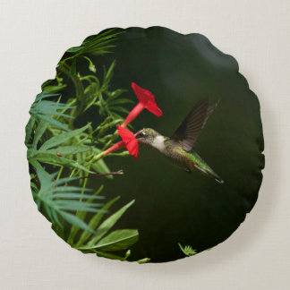 Ruby throated lunch round cushion