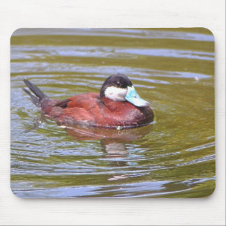 Ruddy duck mouse pad