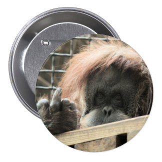 Rude Orangutan Button