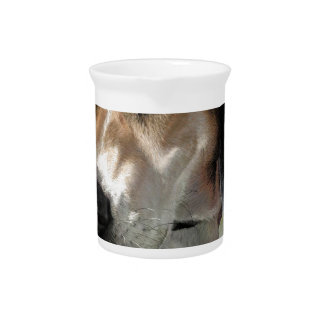 Rudy Catahula Walker hound hand painted digital Drink Pitchers