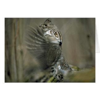 Ruffed grouse drumming, wing blur card