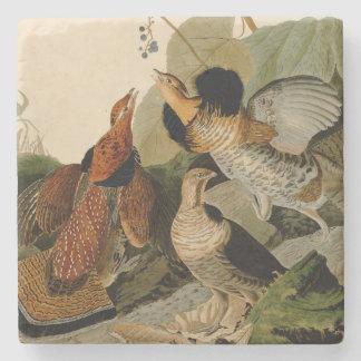 Ruffed Grouse Game Bird Audubon Stone Coaster