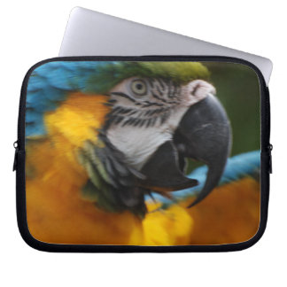 Ruffled Blue and Gold Macaw Laptop Computer Sleeve