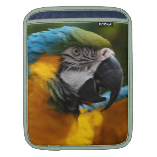 Ruffled Blue and Gold Macaw Sleeve For iPads