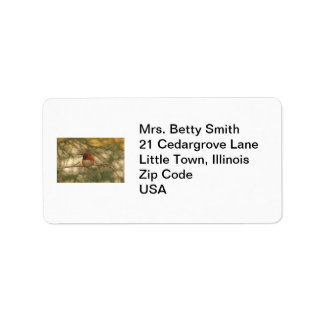 Rufous Hummingbird Sitting Label