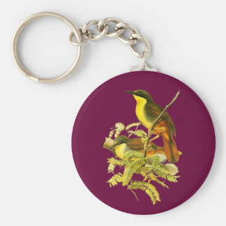 Rufous-vented Laughingthrush Basic Round Button Key Ring