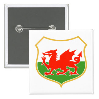rugby wales red welsh dragon sports mascot pin