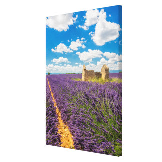 Ruin in Lavender Field, France Canvas Print